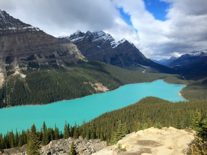 Peyto Lake along the Icefields Parkway.