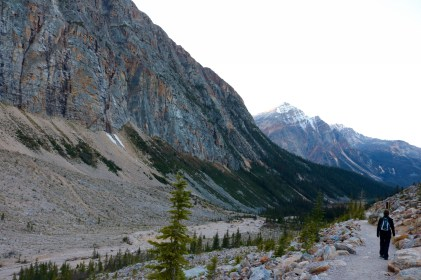 Beautiful scenery along Mount Edith Cavell trail in Jasper National Park.