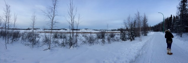 Taking advantage of the daylight to go for a stroll along the Frame Lake trail.
