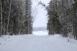 Entering the lake on a winter road off Ingraham Trail