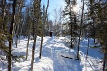 Cameron Falls Hike