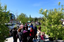 The line up through Somba Ke Plaza for the free Aboriginal Day fish fry.