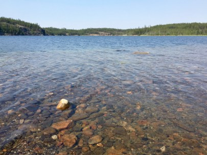 "Clear water in ""Beaver Lake"""