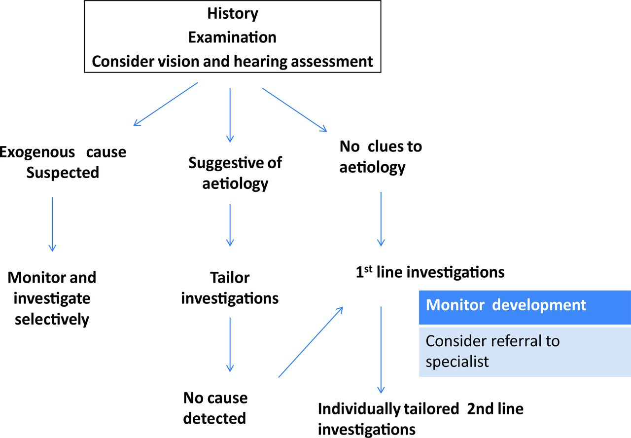 powerpoint decision tree diagram wiring for single pole switch current evidence-based recommendations on investigating children with global developmental delay ...