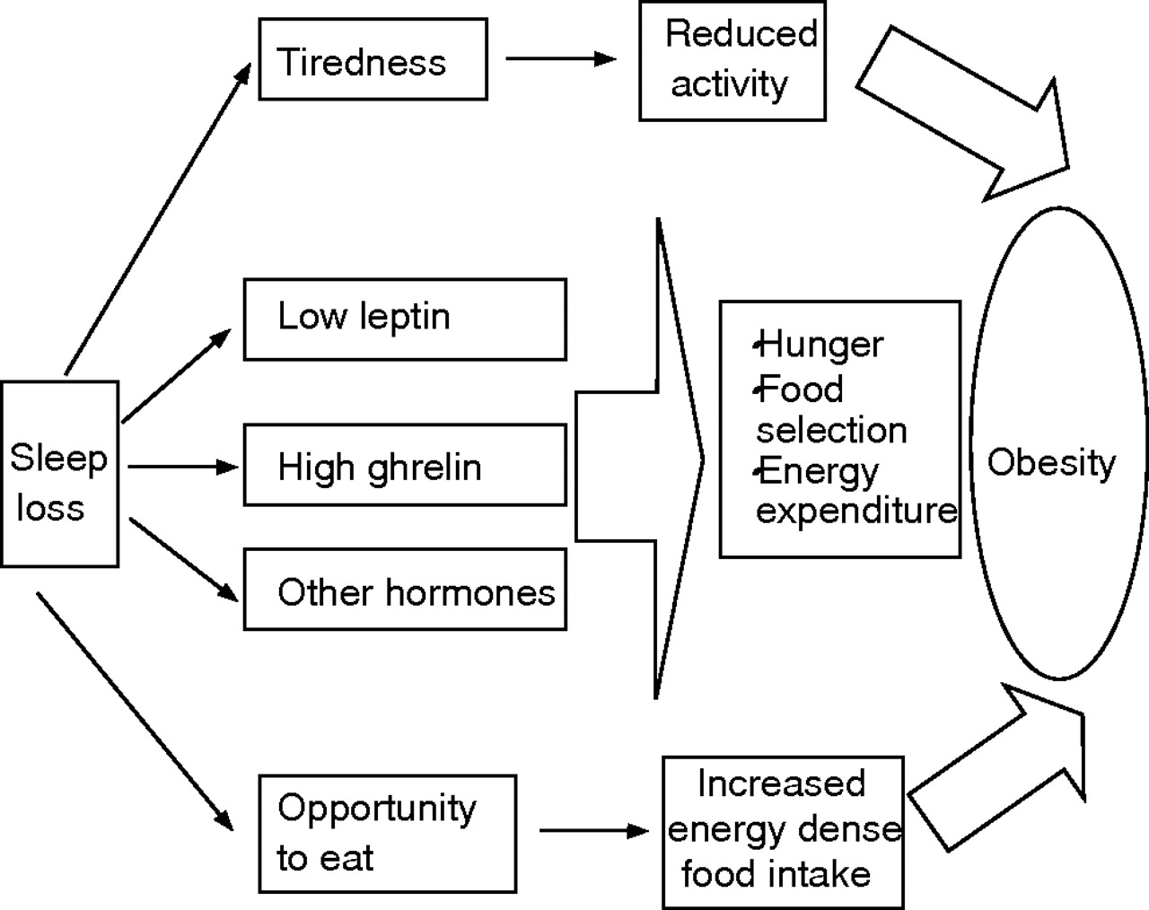 The Link Between Short Sleep Duration And Obesity We Should Recommend More Sleep To Prevent