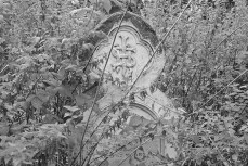ludlow-lost-cemetery3