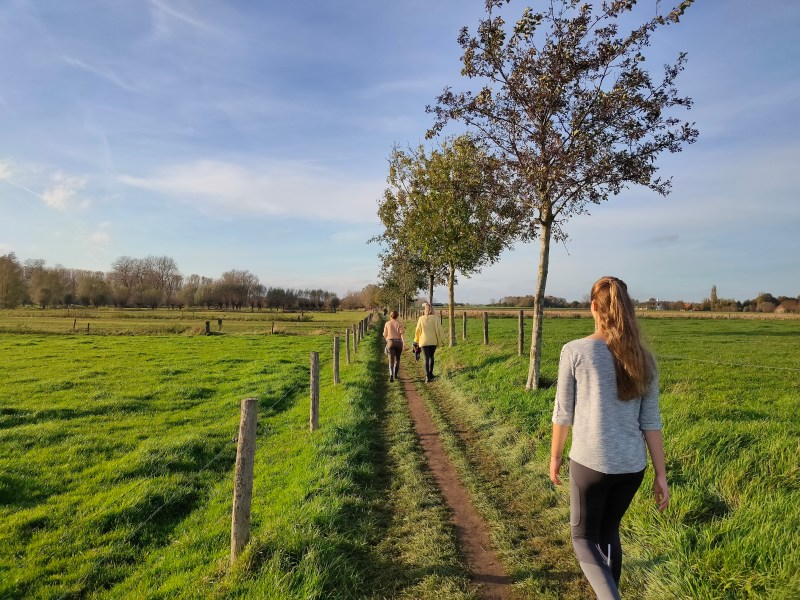 wandelingen leiestreek