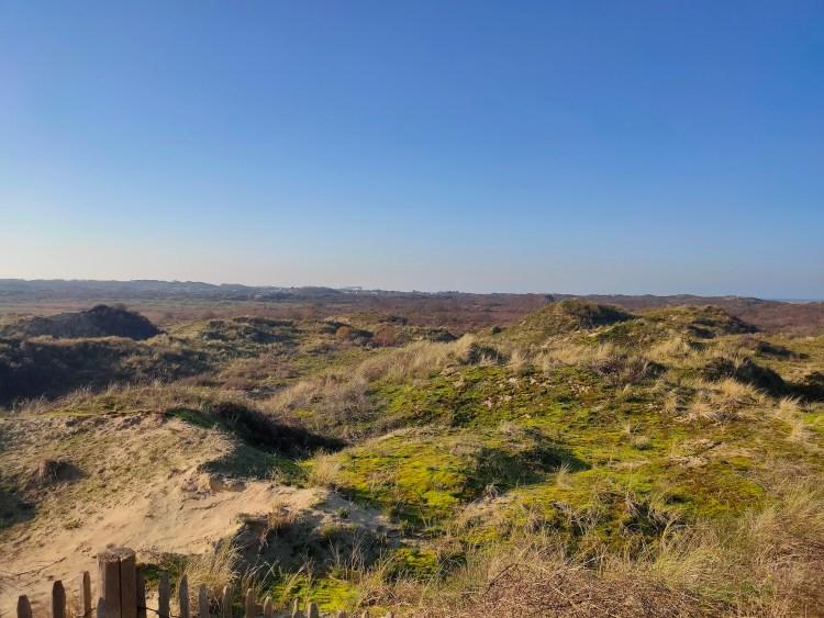 Duinenwandeling in de Westhoek
