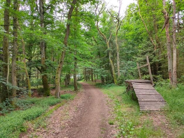 Wandeling La Roche-en-Ardenne