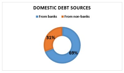 Domestic debt sources