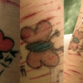 The butterfly project works for some not all add and so