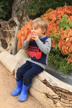Cute Adorable Fall Outfits For Kids Ideas25
