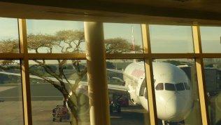 Goodbye Kenya