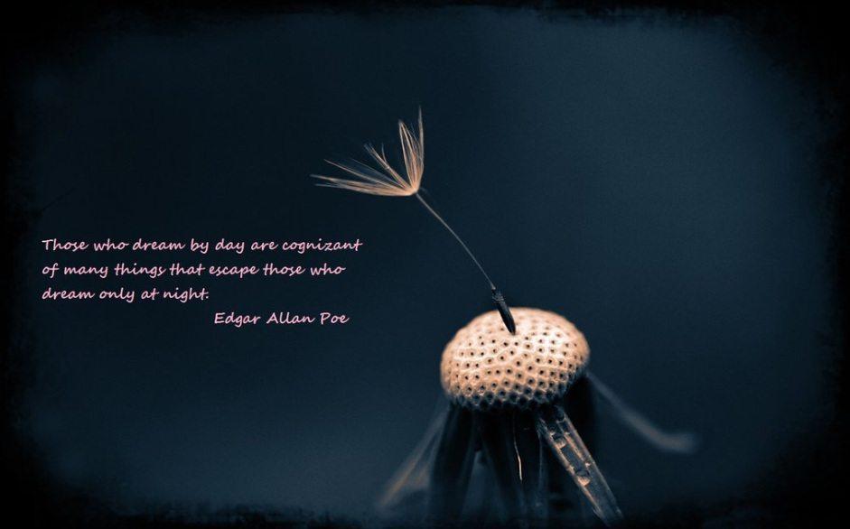 Keep Calm And Love Allen