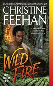 Book Review-Wild Fire