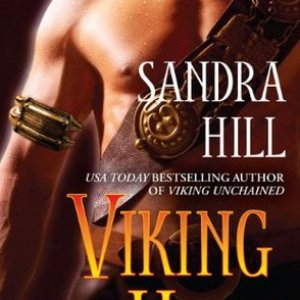 Book Review-Viking Heat