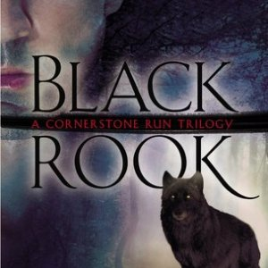 Book Review-Black Rook by Kelly Meade
