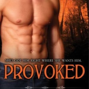 Book Review-Provoked by Rebecca Zanetti