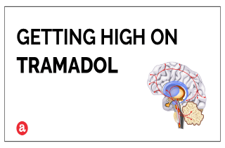 does tramadol get you high