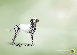 Tide ad showing dalmation missing spots