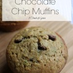 Zucchini Chocolate Chip Muffins, Muffin #4