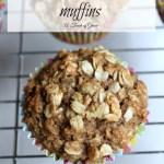 Applesauce Oatmeal Muffins: Muffin #6