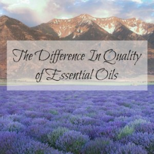 The Difference in Quality of Essential Oils