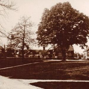 Addington Green with Park Cottage 1930s