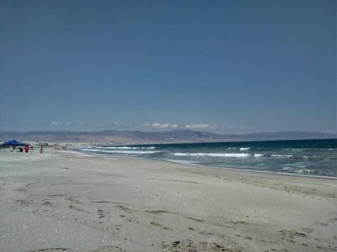 Wild beach on the Pacific