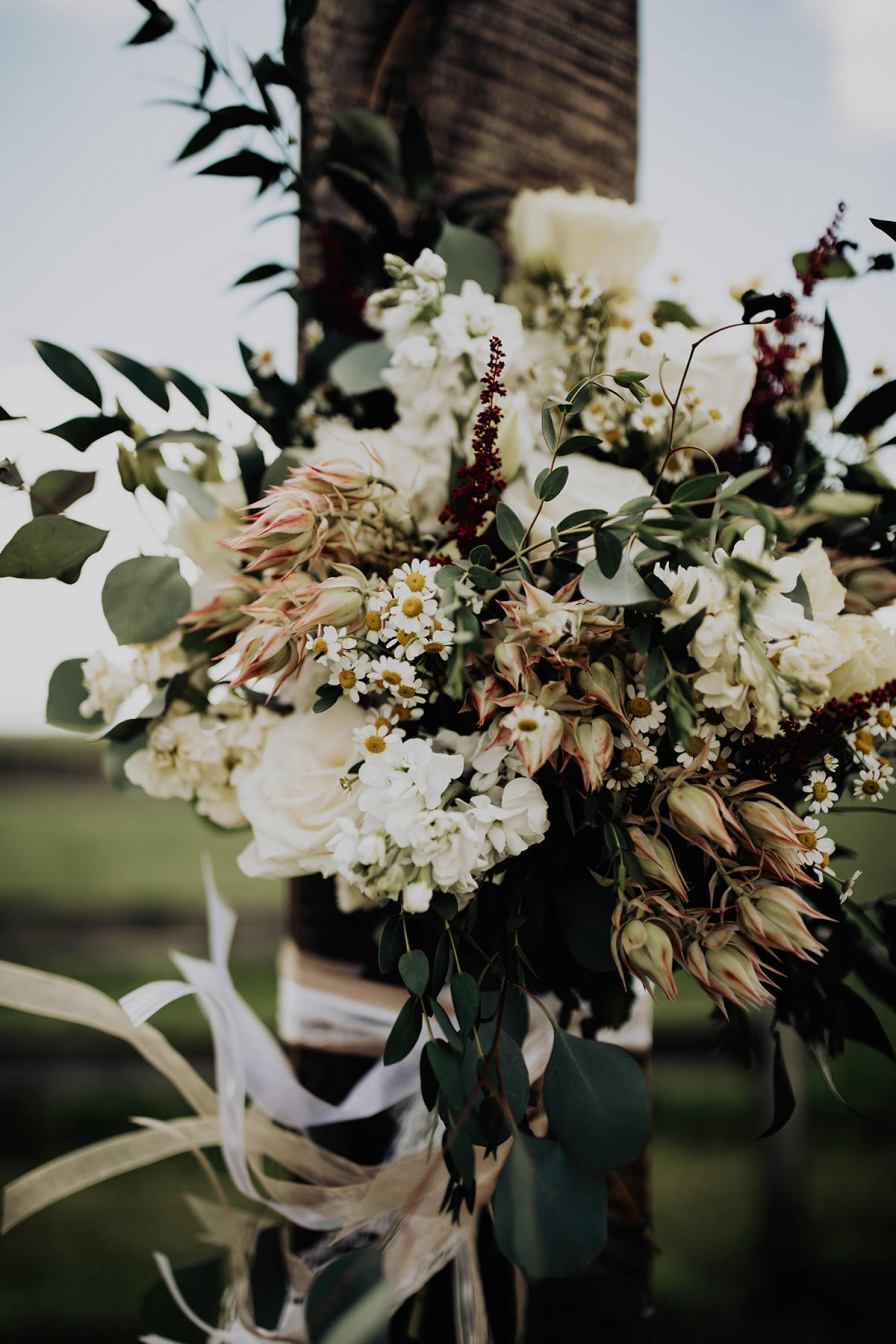 cleveland-backyard-wedding-best-cleveland-wedding-photographer-addison-jones-photography-0042.jpg