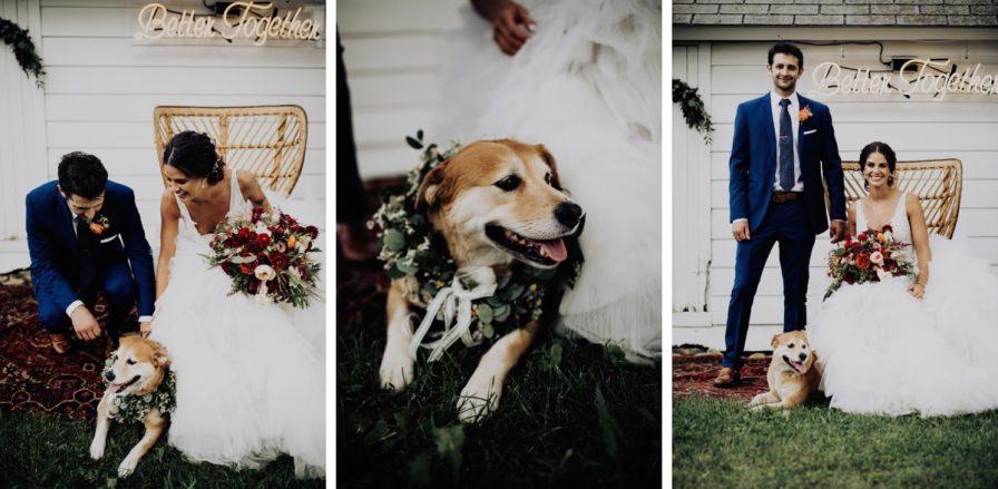cleveland-backyard-wedding-best-cleveland-wedding-photographer-addison-jones-photography-0087.jpg