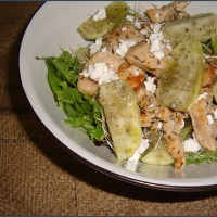 Chicken and prickly pear salad