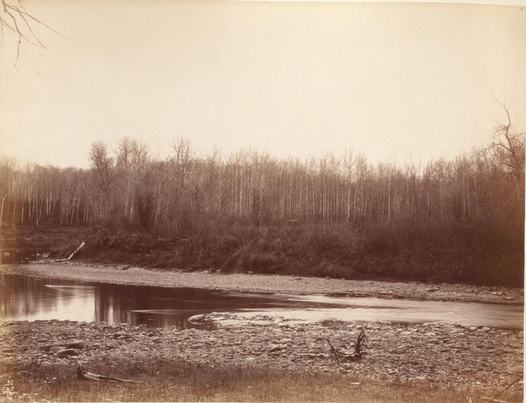 Swan River (1887)