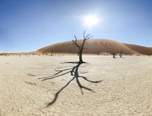 Namibie - Dead Vlei