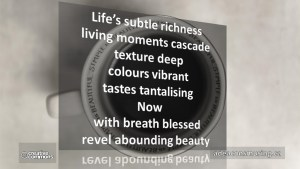 Abounding Beauty