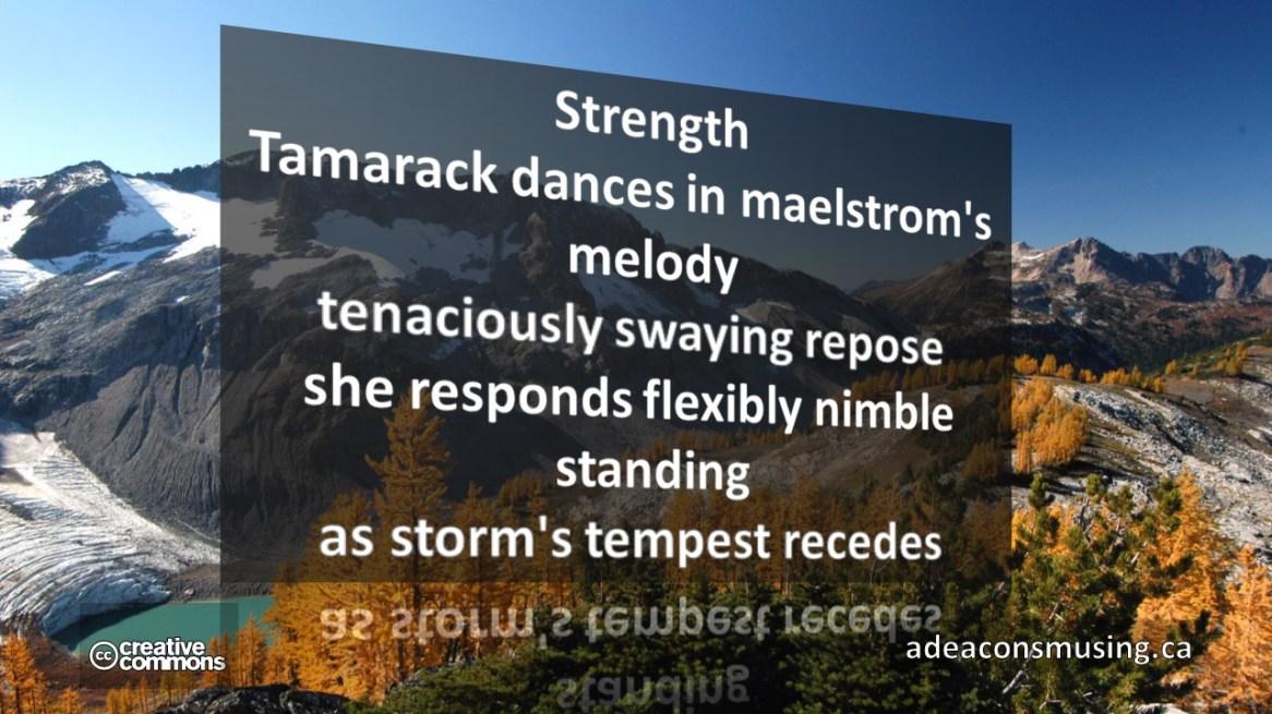 Tempest Recedes