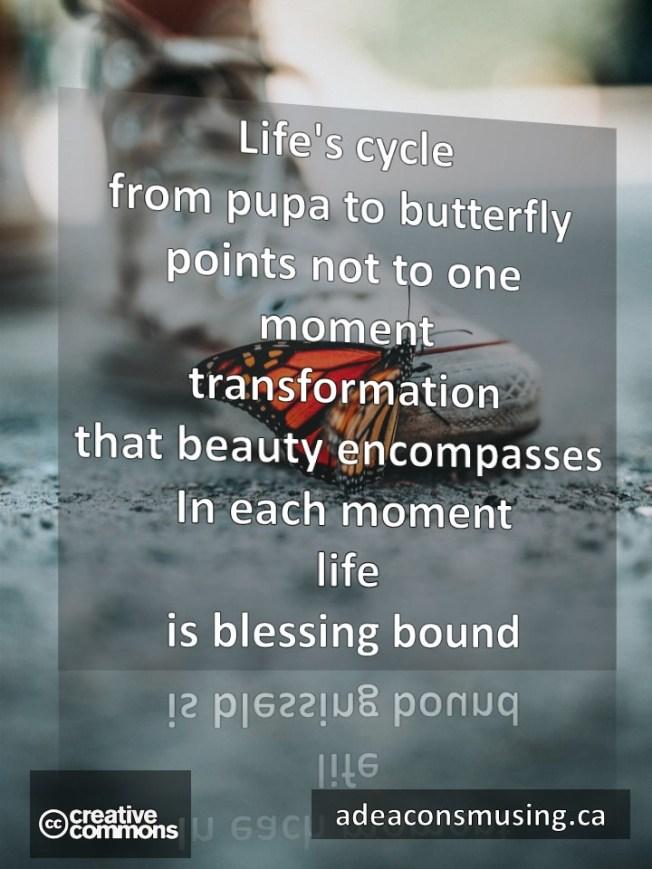 Blessing Bound
