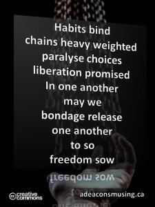 Freedom Sow