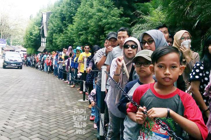 antrian menyemut di jalur masuk ke dalam area Farmhouse Susu Lembang