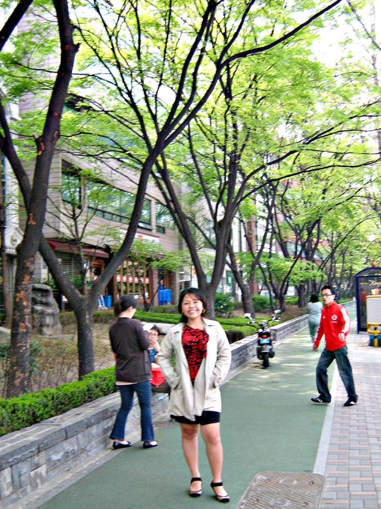 seoul korea spring waltz