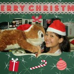 Christmases All Over the World