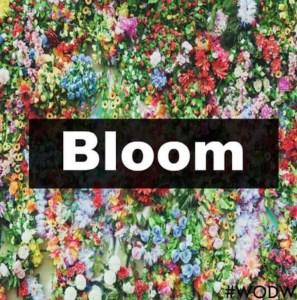 bloom wodw