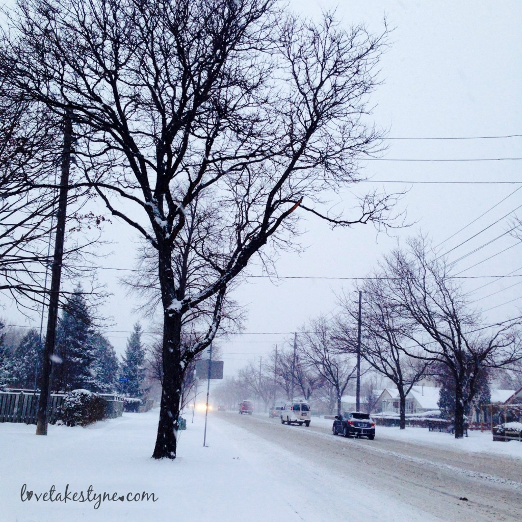 Toronto Canada winter