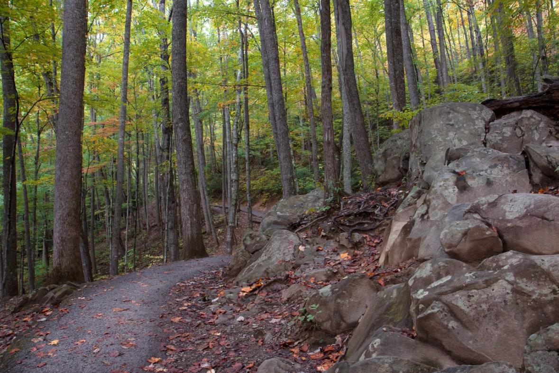 Laurel Falls Trail, Great Smoky Mountain National Park, TN