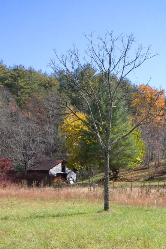 Old barn, Aska Road, Blue Ridge, GA