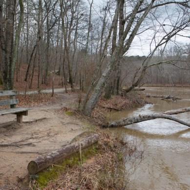Red Trail, Sweetwater Creek State Park, Lithia Springs, GA © Adel Alamo 2014