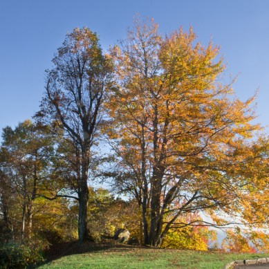 Green Knob Overlook, Blue Ridge Parkway, Asheville NC © Adel Alamo 2015