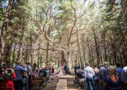 Burbrook Forest wedding
