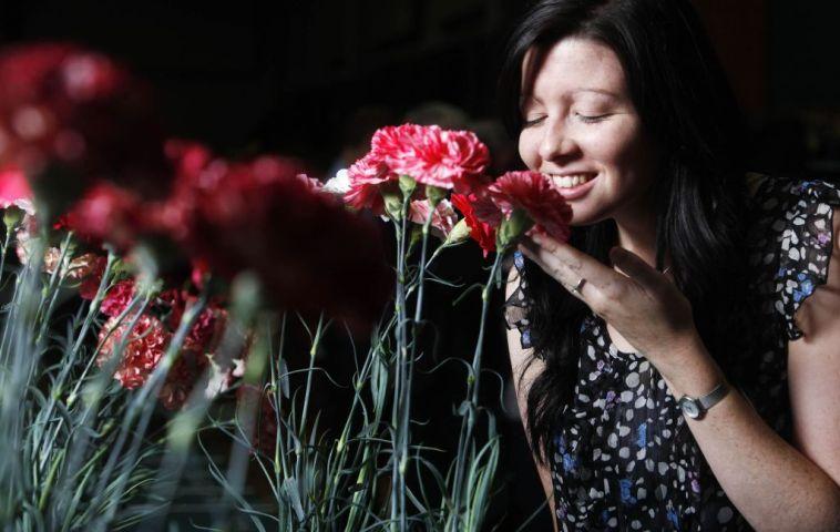 Gorgeous, flori cu parfum dulceag aranjate pentru vizitatorii Royal Horticultural Society (RHS) la evenimentul  Autumn Harvest Show 2011