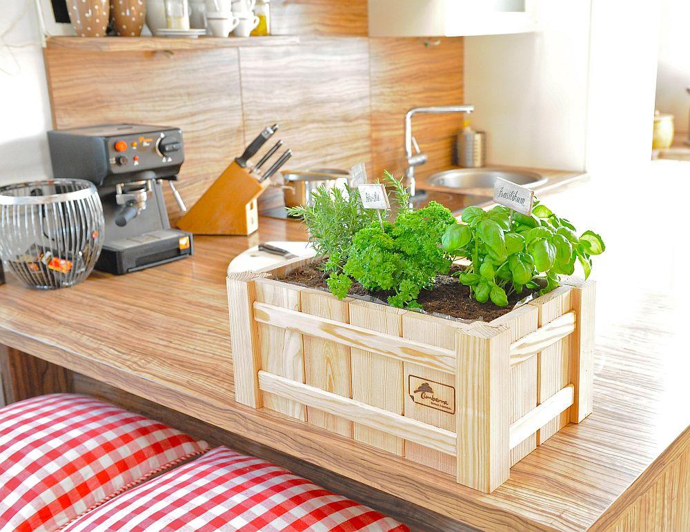 Mini jardiniera pentru apartamente de bloc in care poti avea plante aromatice